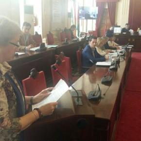 Ciudadanos impulsa reforzar la vigilancia de los parques y un estudio de movilidad de la barriada de Carranque