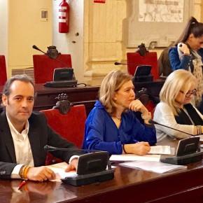 Aprobada por unanimidad la moción de C's para que la Junta actúe en el arroyo Jaboneros