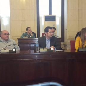 Carballo reclama el tercer hospital para Málaga en el Consejo Social de la ciudad