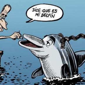 'Flipper, en el Festival de Cine de Málaga', por Ángel Idígoras