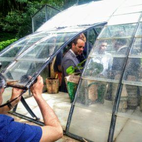 Una nueva medida naranja que ve la luz: 7.000 plantas y 100 nuevos árboles en La Concepción