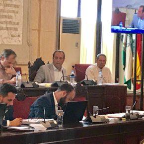 Cs fuerza en pleno al PP a decidir en el próximo mes el futuro de Limasa