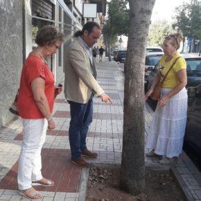Cassá visita Huelin de la mano de la Asociación de Vecinos El Martinete