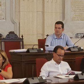 Carballo asiste al Consejo Escolar Municipal de Málaga