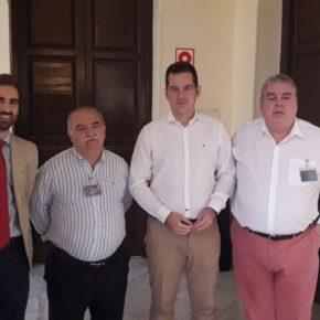 Aprobada la moción de Cs para impulsar inversiones que modernicen La Malagueta