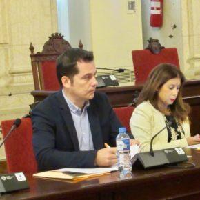 Luz verde a fomentar planes de apoyo e inclusión para escolares con dislexia en Málaga
