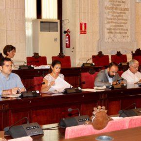 Aprobada nuestra moción para promover la llegada de startups y emprendedores extranjeros a Málaga