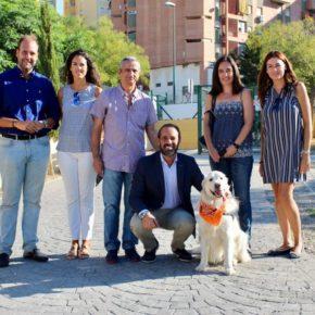Cs propone crear un Área de Adopciones Internacionales de Animales para reducir la tasa de sacrificios en Málaga