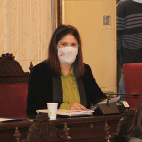 El pleno de Málaga aprueba instar al gobierno a elaborar un Plan de Vacunación
